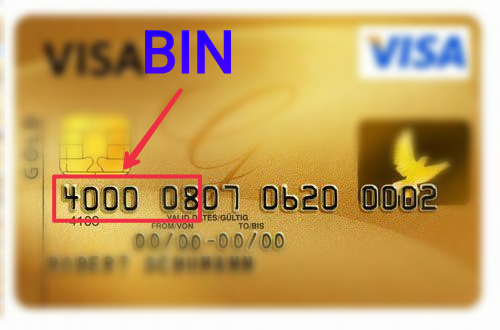 What is Bin